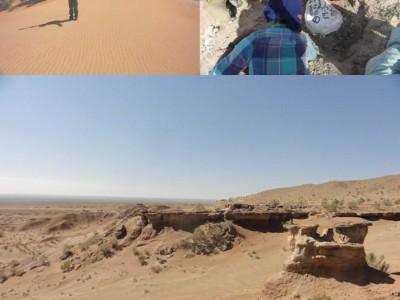総合理学専攻の加藤さんが東ゴビ砂漠地域の野外調査に参加(8月)