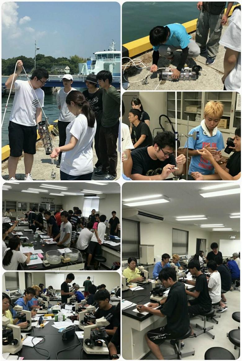 夏の海!野外実践指導実習Ⅱ in前島(8月)