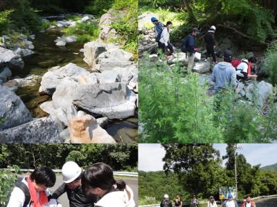 徳島県高越山で岩石の観察・採取(6月)