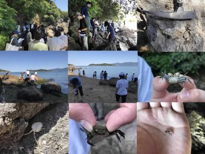 海だ!野外実践指導実習Ⅰ前島編(6月)