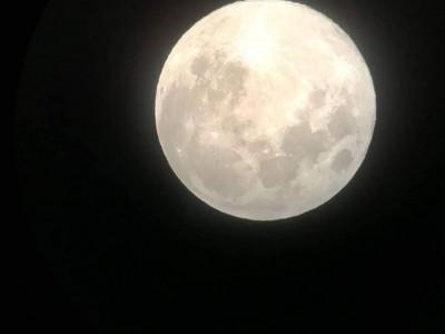 平成最後の満月 ~伊代野研究室紹介~
