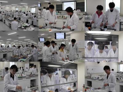 授業風景 ~化学実験~