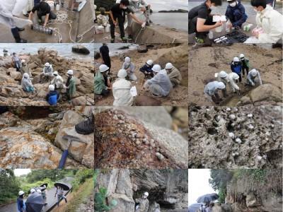 前島で野外実践指導実習Ⅱを実施